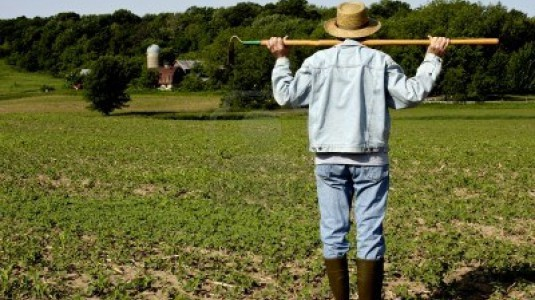 Bonus disoccupazione agricola