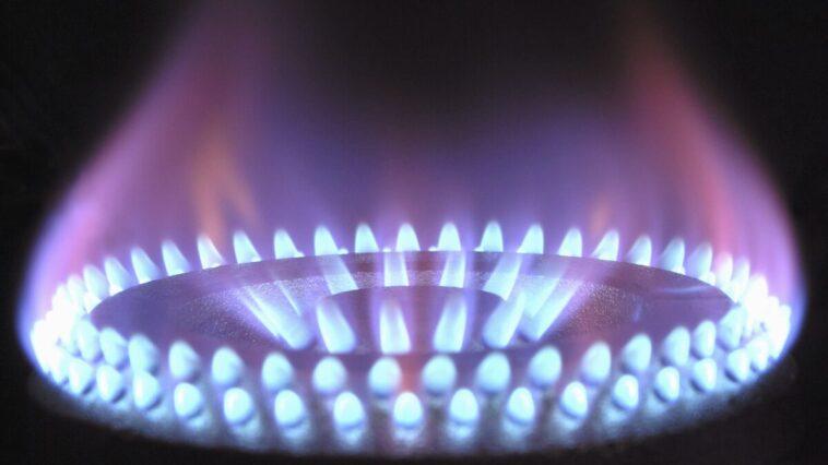 Bolletta luce e gas